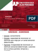 4. AGNOSIAS