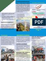 triptico desarrollo sostenible