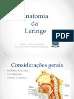 Aula Anatomia Da Laringe
