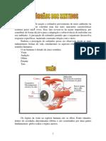 Biologia modulo2