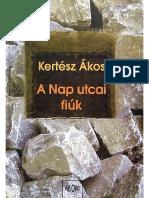Kertesz Akos - A Nap Utcai Fiuk