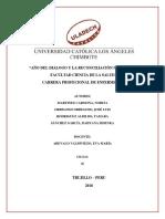 Monografia Salud Ambiental (1)