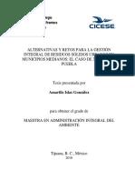 Alternativas y Retos Para La Girsu en Municipios Medianos
