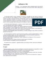 Apidiagnoza - Iulie