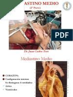 4) Mediastino Medio II