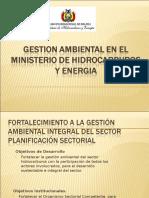 Gestion Ambiental en El Ministerio de Hidrocarburos y Energia