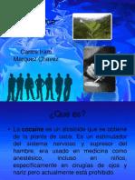 Cocaina info