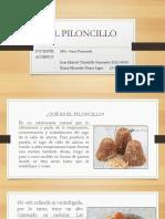 El Piloncillo Ppt