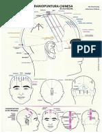 Mapa Craniopuntura Chinesa
