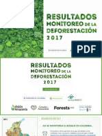 Informe deforestación en colombia del IDEAM