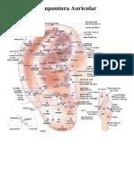 Cartografia de auriculoterapia doble carta.docx