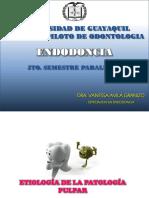 Patologia Pulpar y Periapical