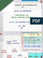 2017 Obstetricia Sna