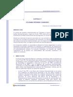 Colombia regimen cambiario.pdf