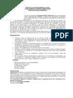 Resumen Final Parlamento CD
