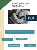 Psicología Del Desarrollo Viejitos