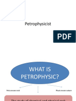 Petro Physicist