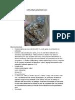 Caracterizacion de Minerales
