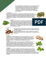10 plantas medicinas, instruetos guitarra chirimia, tambor , tecomate,anona.docx