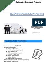 Fundamentos Basicos en Gerencia de Proyectos 2018