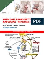F11 2018 Fisiologia Rep Masc Horm Sex