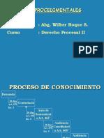 DPC IIvias procedimentales