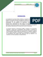 BPM EN LIMONES.docx