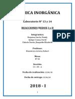 INORGANICA-LAB-N13-14 (1)