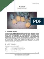 nenas.pdf
