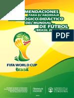 Recomendaciones Para El Mundial 2014