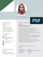 Modern Professional Resume