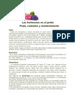 Las Hortensias Cuidados y Mantenimiento - Copia