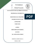 Informes2_oseo_Prácticas_Laboratorio_Morfofisiologia_I.docx