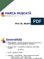 Marca Muscata 2017 2018
