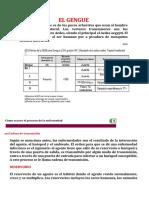 EL GENGUE  de  lizeth.docx