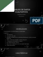 Análisis de Datos Cualitativos