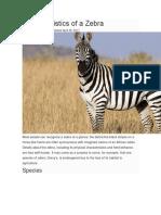 Characteristics of a Zebra