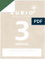 329908329-Cuaderno-Rubio-Gnosias-3.pdf