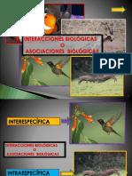 Asociaciones biologicas