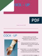 8._Cock_up__2018.pdf