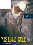 Visible Gold