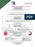Salmonella en Aguas ISO 19250-2010