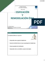 009_Osificacion y Remodelacion
