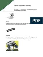 Partes Internas y Externs de Un Microscopio