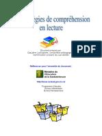 Cahier_des_strategies_de_comprehension_en_lecture.doc