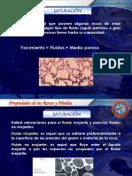 85691667-SATURACION.pdf