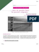2018_06_15 Puentes Metalicos de Luces Colgantes