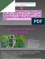 Expo Captacion Carbono