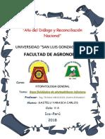 GASTE FITO.docx