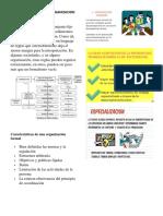 CARACTERISTICAS DE LA ORGANIZACION FORMAL.docx